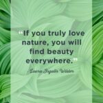 Beautiful Greenery Quotes Facebook