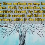Confucius Quotes About Experience