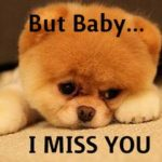 Cute I Miss You Quotes and Sayings Pictures