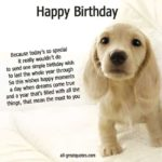 Dog Birthday Captions Tumblr