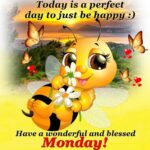 Funny Good Morning Monday Quotes Pinterest