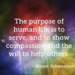 Quotes About Sympathy by Albert Schweitzer